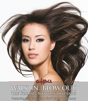 Hair Cuttery Cibu Walk In Blow Out Special