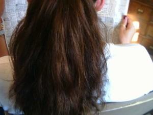 Frizzy Hair Repair