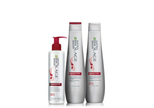 Matrix Biolage Repair Inside products